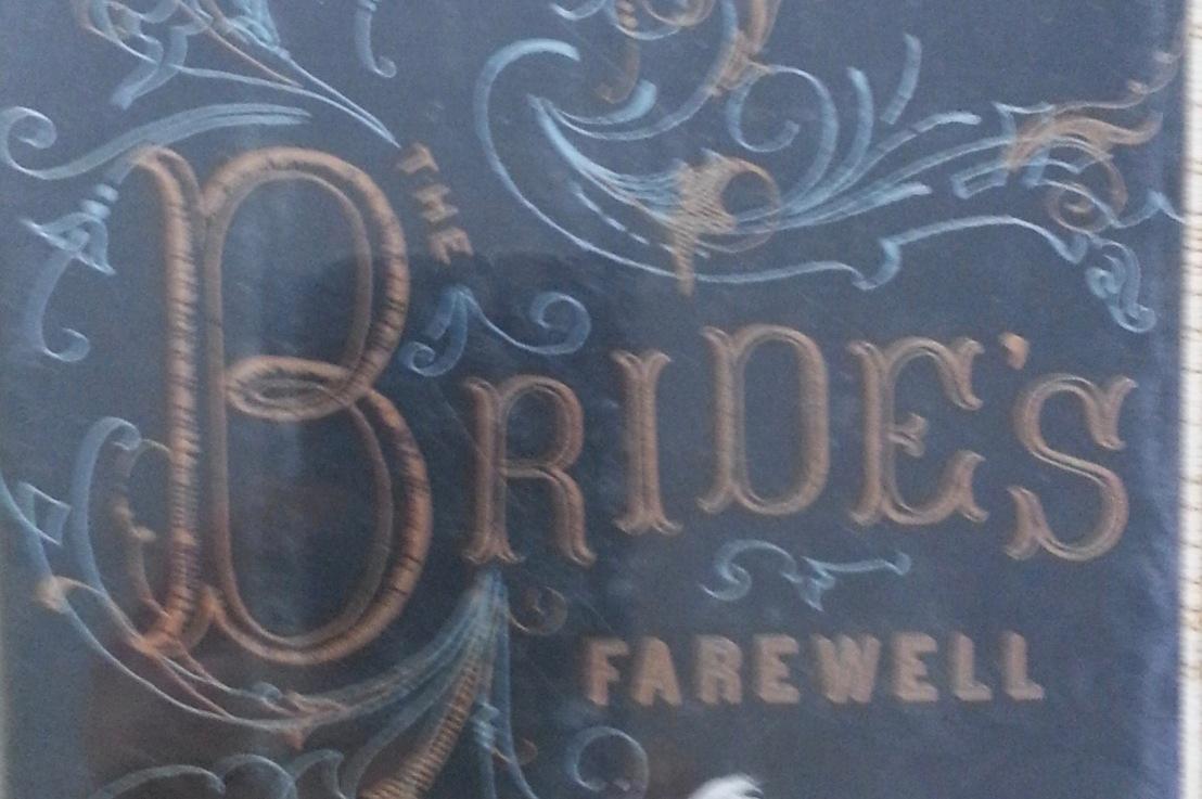 Meg Rosoff's — Bride's Farewell*****