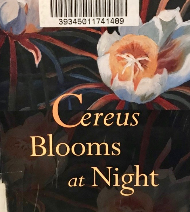 Shani Mootoo's — Cireus blooms atnight