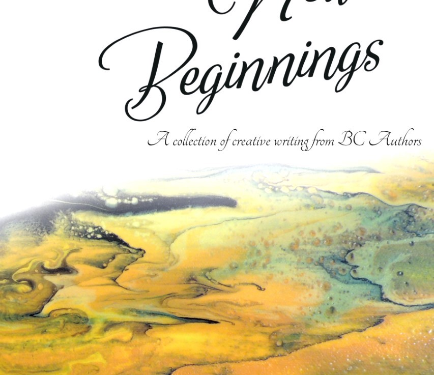New Beginnings edited by Erik D'Souza